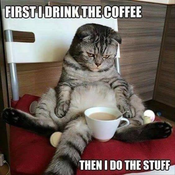 A cat sitting next to a cup of coffee Description generated with very high confidence