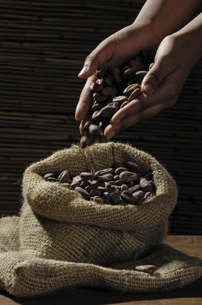 light roast and dark roast coffee beans have some stark differences