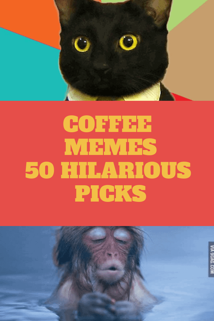 50 Funny Coffee Memes to laugh all the way to the cafe #tooMuchCoffee